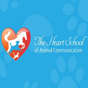 learn how to talk to animals com
